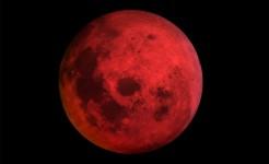 Sambut Blood Moon, KBN Laksanakan Shalat Gerhana Bulan